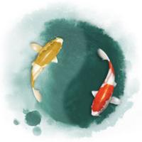 大鱼用户1553219119167954
