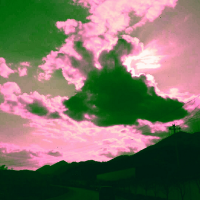 杉川飛雪37674