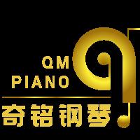 泰安钢琴培训___奇铭钢琴中心