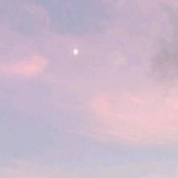 桃啃爱影视