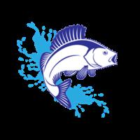 大鱼用户1561951330765788