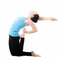 每日一堂瑜伽视频