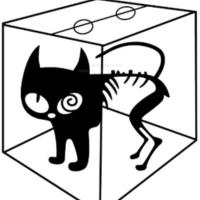 爱上物理的小猫