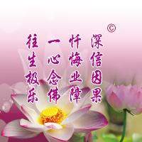 沈阳因果教育教学讲堂