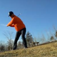 高尔夫和羊