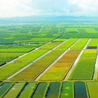玉明的农业财富路
