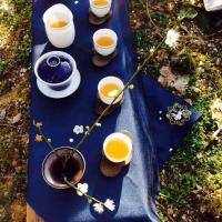 武夷茶生活