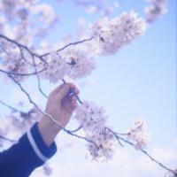 花香四溢的四月