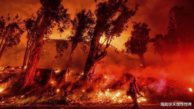 美國加州州長痛批特朗普:明知道正在遭遇大火,還把資金給撤走瞭-圖4