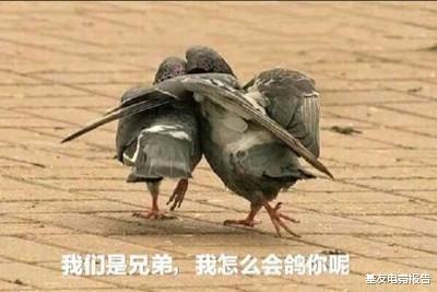 rpg游戏_LOL手游无国服?日服遭中国玩家远征被爆破!官方:苹果今天肯定能上线-第1张图片-游戏摸鱼怪