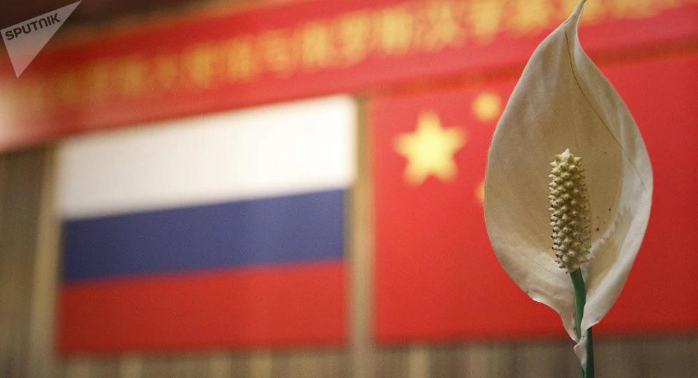 """新加坡媒體:中國和俄羅斯是""""新時代聯盟""""!-圖2"""