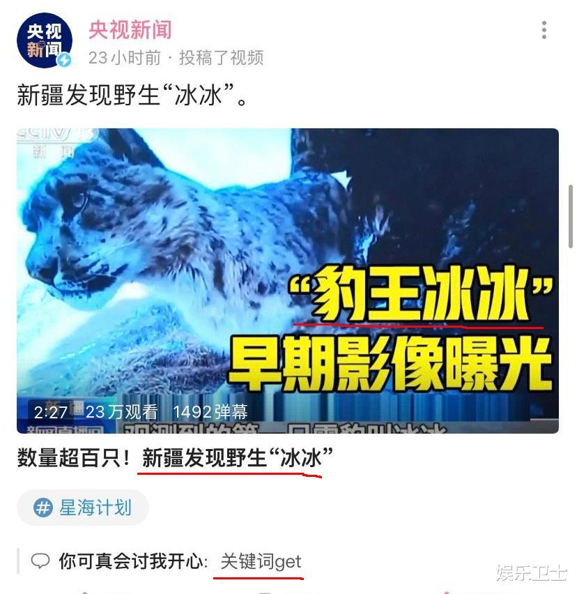 央視記者王冰冰直播造型甜爆,坐姿顯露超A身材,抽獎後網友網名令她大笑-圖7