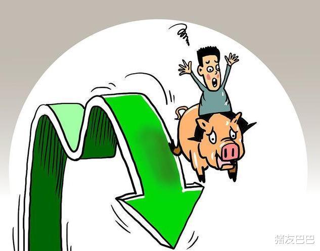 """9月20日豬價:一片綠!豬價""""遇冷""""跌破35元/公斤,上漲要落空?-圖4"""