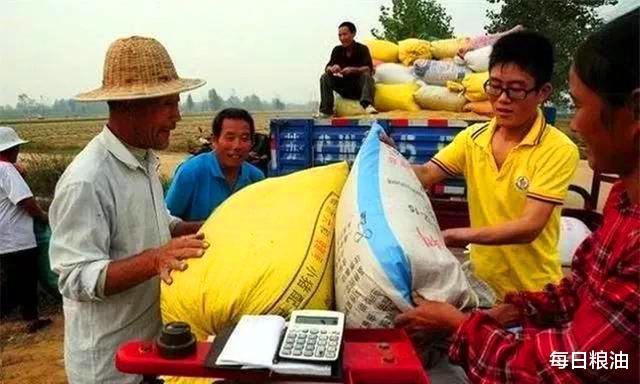 每日糧油:國慶中秋雙節第三天 小麥玉米價格持續上漲-圖3