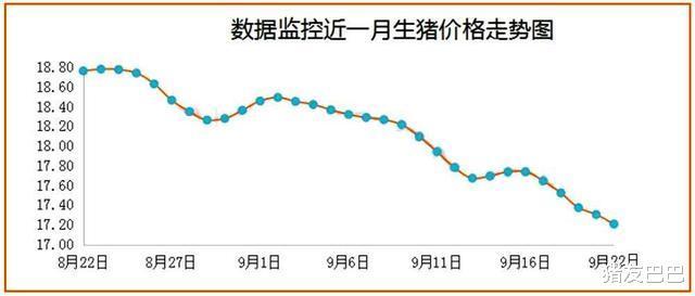 """9月22日豬價:2漲15跌!豬價""""塌方式""""下滑,要跌回15元一斤?-圖2"""