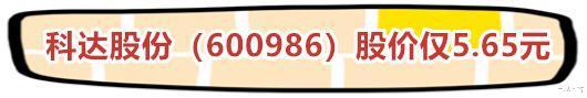 僅8隻芯片人氣+數字貨幣股,(600986)股價僅5.65元-圖5