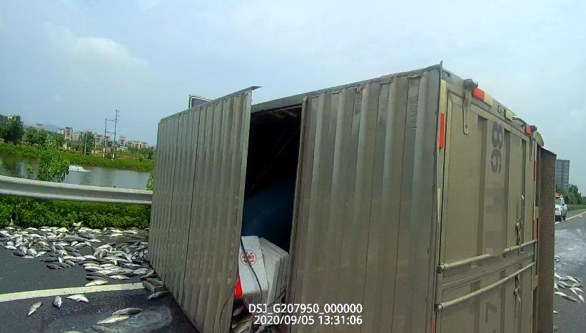1.5噸鬥門鱸魚鋪滿高速公路!車上一聲巨響,輪胎飛出300米……-圖4
