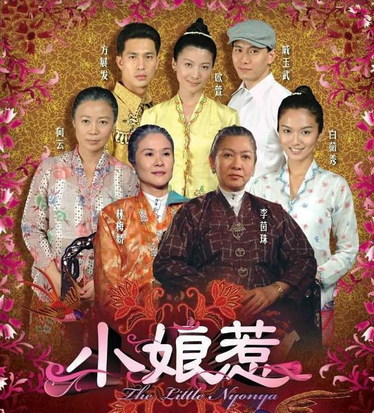 新加坡十佳電視劇,當年都風靡一時,你還記得幾部?-圖9