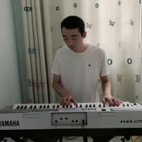 阿龙电子琴