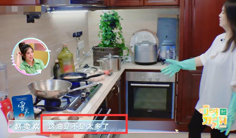 李湘下廚煎雞蛋,當鏡頭拍到鍋裡的油,觀眾:太侮辱智商瞭-圖5