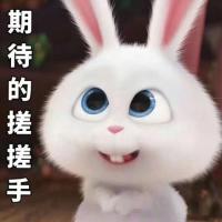 兔子爱娱乐