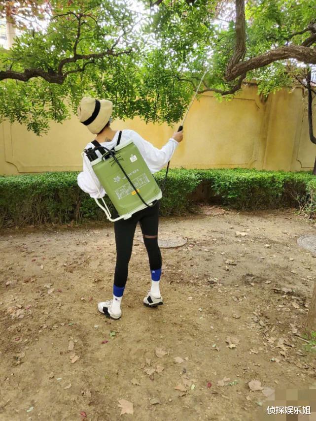 母愛爆棚!張歆藝怕兒子被蚊蟲咬,親自背噴霧器在小區打驅蚊水-圖4