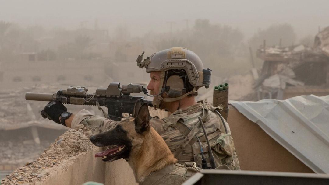 為什麼美國可以在戰爭中賺得盆滿缽滿?打這種仗就一夜回到解放前-圖2