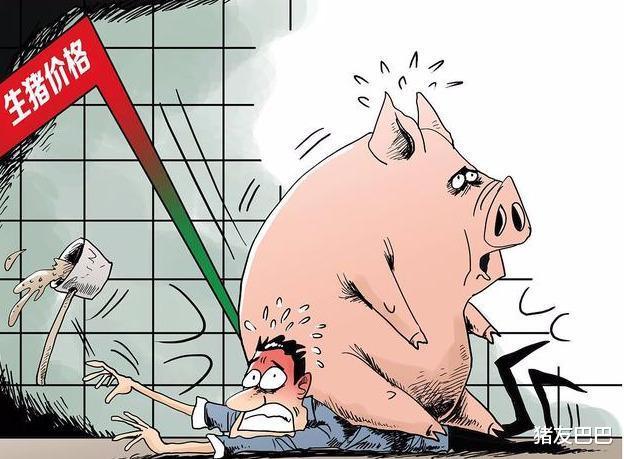 """凍肉來襲屠企壓價,豬價""""上漲生變"""",要跌回15元一斤?答案來瞭-圖2"""