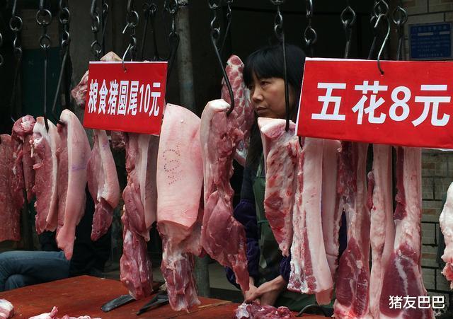 """豬價上漲""""急剎車"""",10月豬價要""""涼涼""""?豬價要跌破15元一斤?-圖4"""