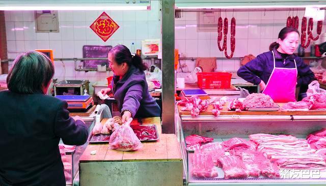 """1漲28跌!豬價遇冷""""跌不止"""",10月豬價要跌破15元一斤?-圖2"""