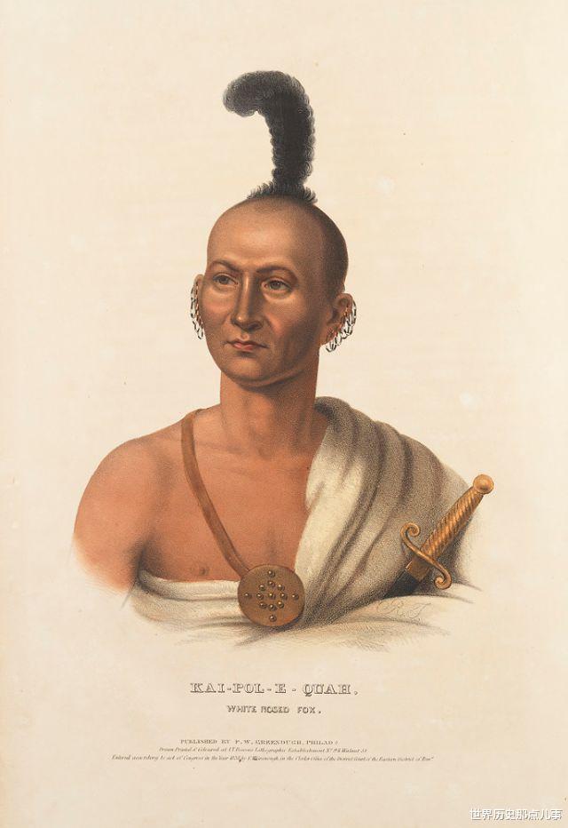 舊影拾記:19世紀,印第安人到華盛頓談判,美國畫傢給他們畫像-圖9