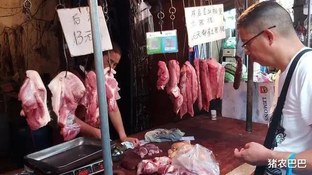 """豬價又是""""一片紅"""",10月豬市將如何走呢?向上,還是往下!-圖4"""