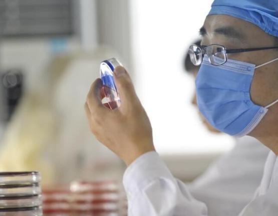 繼俄羅斯後,中國首款疫苗也要來瞭,大概上市時間已公佈-圖5
