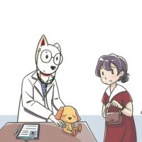 兽医小明real