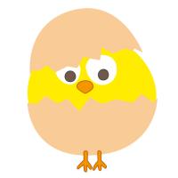 顽强的小鸡蛋