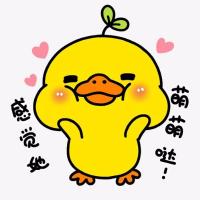 可爱的鸭小鸭