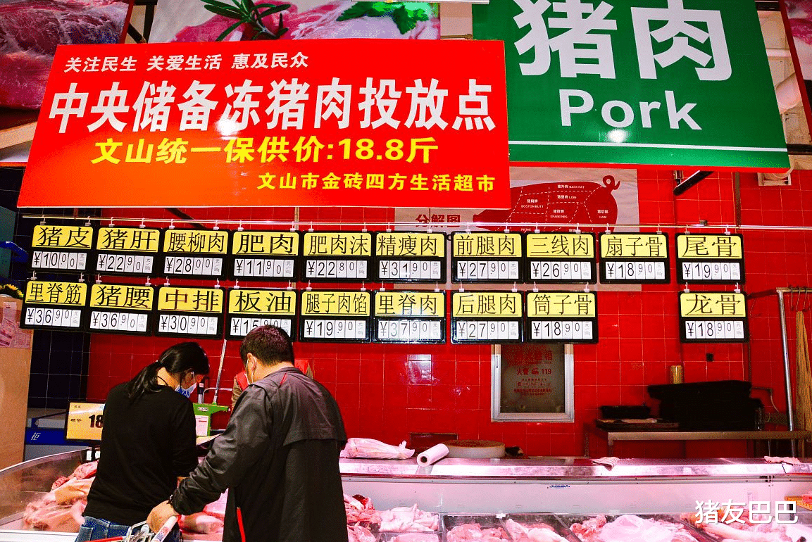 """1月24日豬價:28跌!豬價下跌無休止,春節前要""""跌綠到底""""?-圖5"""