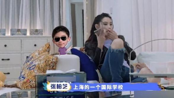 謝霆鋒已為兒子安排好一切,張柏芝想帶兒子移居上海遭拒