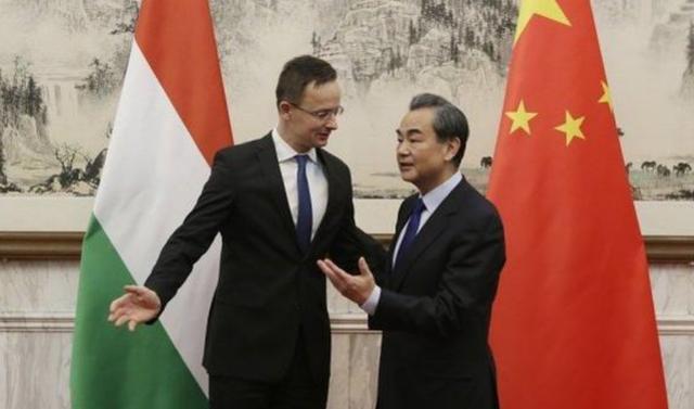 """""""中國幫忙救瞭歐洲人的命""""匈牙利公開替中國發聲,釋放積極信號-圖3"""