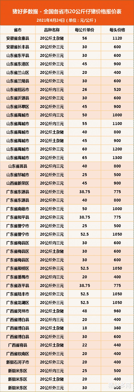 """6月24日20公斤仔豬價格,豬市""""踩踏不斷"""",仔豬跌""""上癮""""瞭?-圖6"""